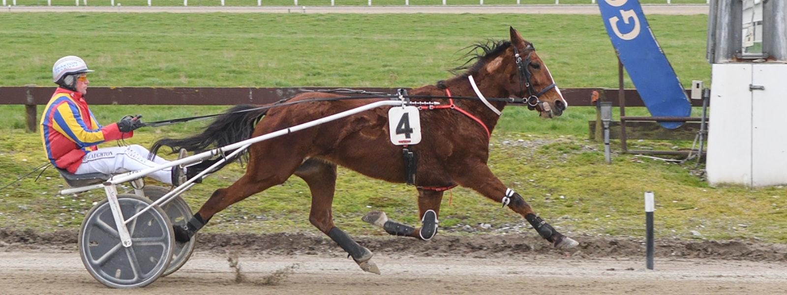 HRNZ | Harness Racing New Zealand