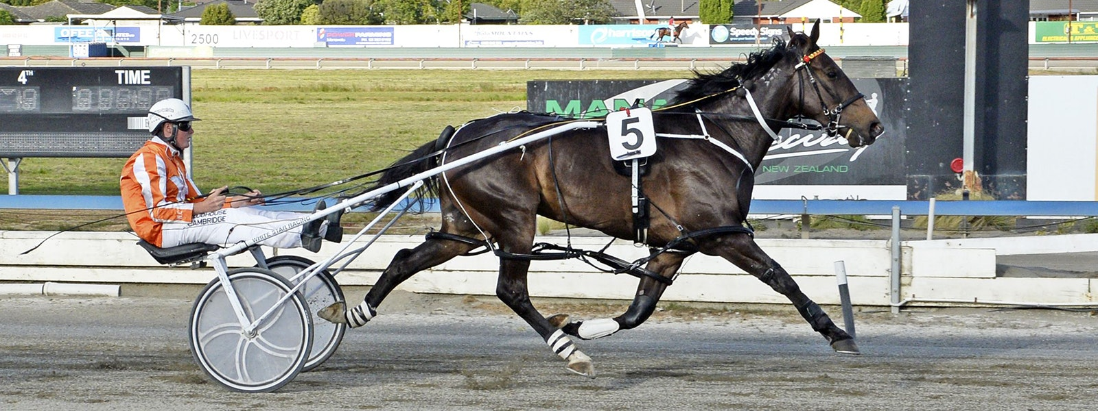HRNZ | Harness Racing New Zealand